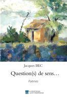 Question(s) de sens…